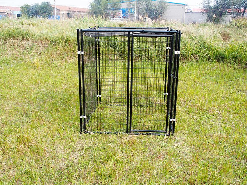 extra large pet kennel