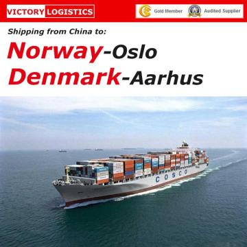 FCL&LCL Ocean Shipping From China to Norway and Denmark