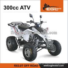 Moto de 300cc ATV (bom desempenho /EEC)