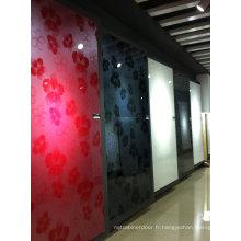 Feuille acrylique de porte d'armoire brillante (taille standard)