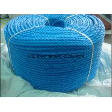 Polypropylene Rope / PP Rope / Mooring Rope
