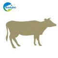 Fuente de fábrica Materia Prima Bacillus Subtilis para Animal Additive