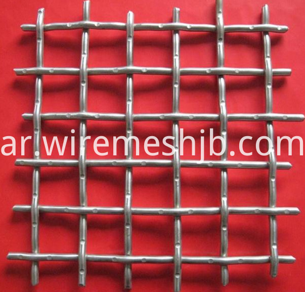 SS Wire Mesh2
