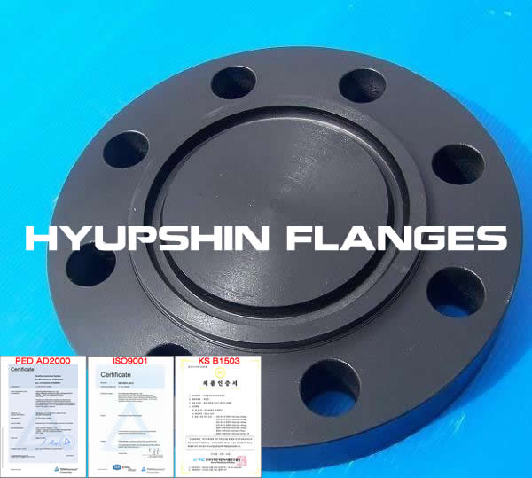 Hyupshin Flanges Rtj Blind Flanges Ring Type Jiont Blind Flanges