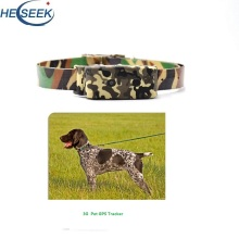 Realtid Pet Cat Dog Collar Tracking GPS