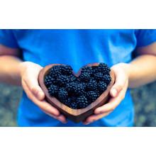 Zl-1046 Anic Blackberry Zl-1046 31