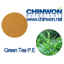 Botanical Preservatives Green Tea Extract