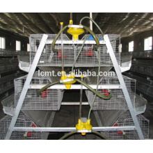 equipamentos automáticos de avicultura de frangos de corte