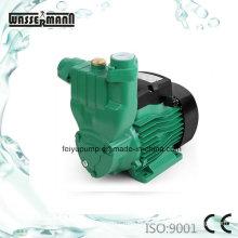 Domestic Water Pressure Boosting Pump