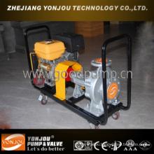 Air Cooled Hot Oil Pump, Hot Oil Transfer Pump, Oil Pump, Lube Oil Centrifugal Pump