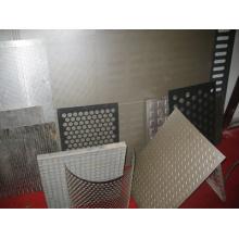 Panneaux de placage en métal perforé PVDF / Panneaux métalliques perforés
