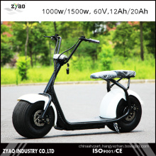 2016 Hot Sales 2 Wheel Electric Scooter 1000W Citycoco 60V 12ah/20ah