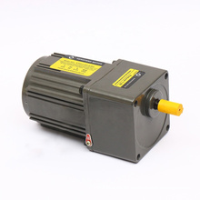 40W Single Phase 110V/220V AC Gear Motor