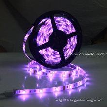 Bande LED RVB étanche 12V 5050SMD