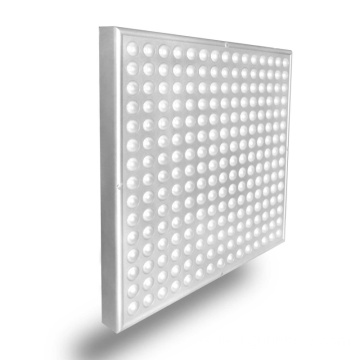 Full Spectrum LED Grow Light Interior