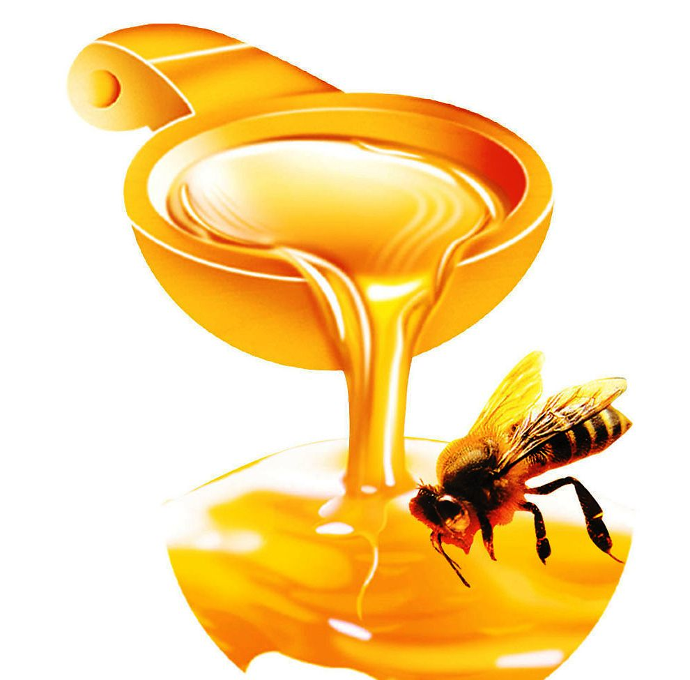 hot sale natural organic liden bee honey