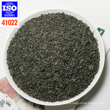 Super China twisted Green tea low price with good quality