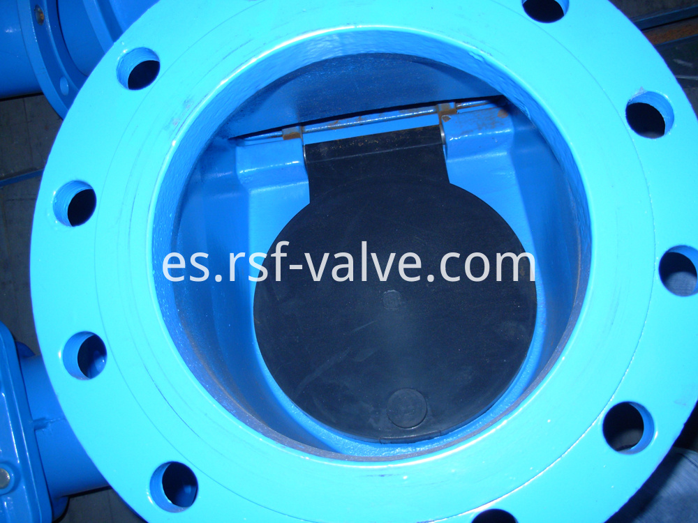 Rubber Capsuled Disc Swing Check Valve 2