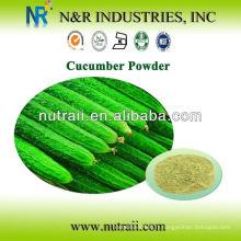 Fournisseur de poudre à base de plantes en poudre de concombre