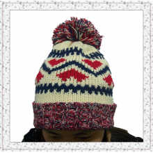 Weave Knitted Beanie Hat with Fleece Inside Winter Hat for Girls (1-3469)