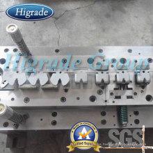 Molde de molde / estampado del molde / que estampa el moldear (HRD-J10162)