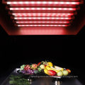Chinese Manufacture T8 Fresh Food LED Tube with Shatterproof Glass