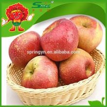Fuji tipo miel manzana perla manzana