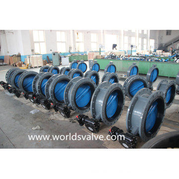 Double Flange Butterfly Valve with Painting Disc