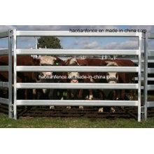 Best Price Galvanized Heavy Duty Panneaux d'élevage, clôtures de bétail, panneaux de cheval occasion