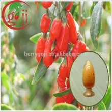 High Quality Goji berry powder/Goji juice powder/Goji Extract