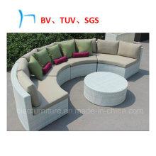 Garden Furnitur Rattan Furniture Garden Leisure Sofa (4301)