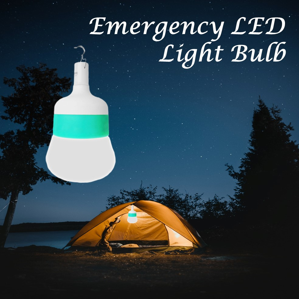 Intelligent led emergency bulb
