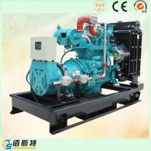 Generador de Gas Natural 50kVA Wit Power Engine