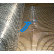 Welded Wire Mesh in Low Price, Electro Galvanized Welded Wire Mesh
