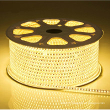 CE RoHS 12w/m Led flexible strip light for holiday 220V AC