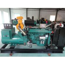 Open or Silent Generator 200kw/250kVA; Weichai or Ricardodiesel Genset