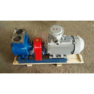 Electric rotary sliding vane oil fuel pump