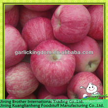 red star apple low price