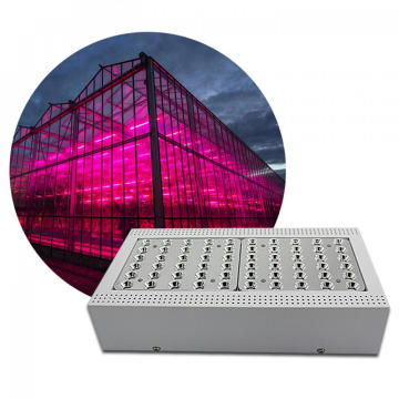 Lampu LED panel spektrum penuh tumbuh
