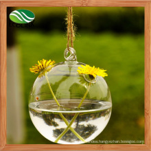 Unique Hanging Crystal Glass Flower Vases