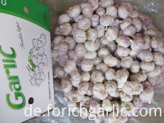 Fresh Normal White Garlic From Jinxiang