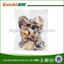 Cogumelo Shiitake Orgânico Integral
