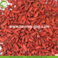 Venta al por mayor Dulce secado bajo Pesticida Goji Berry
