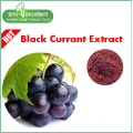 Blackcurrant Ribes nigrum 35٪ Anthocyanins