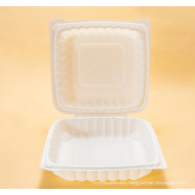 Disposable lunch boxes for takeout in restaurants