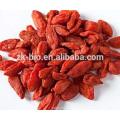 100% natural Chinese dried goji berry
