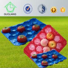 Chine Fabricant thermoformé perforé Plateau d'insertions de boursouflure pour l'usage frais d'industrie d'emballage de fruit