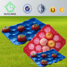 China Manufacturer Thermoformed Perforated Blister Inserts Tray for Fresh Fruit Packaging Industry Use