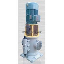 O CE aprovou a bomba de parafuso principal do óleo do motor 3GCLS110X2
