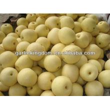 Fresh crown pear